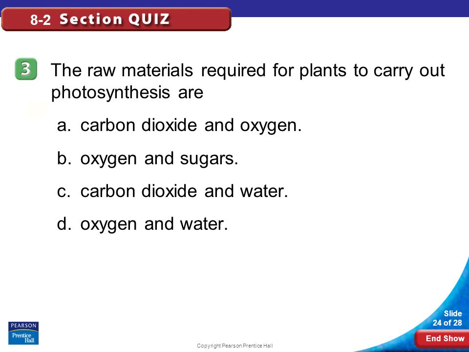 End Show Slide 24 of 28 Copyright Pearson Prentice Hall 8-2 The raw materials required for plants to carry out photosynthesis are a.carbon dioxide and oxygen.