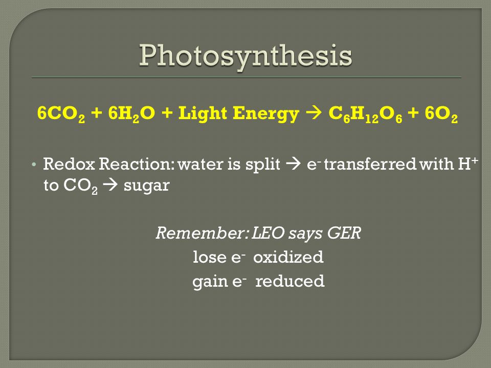 6CO 2 + 6H 2 O + Light Energy  C 6 H 12 O 6 + 6O 2 Redox Reaction: water is split  e - transferred with H + to CO 2  sugar Remember: LEO says GER lose e - oxidized gain e - reduced