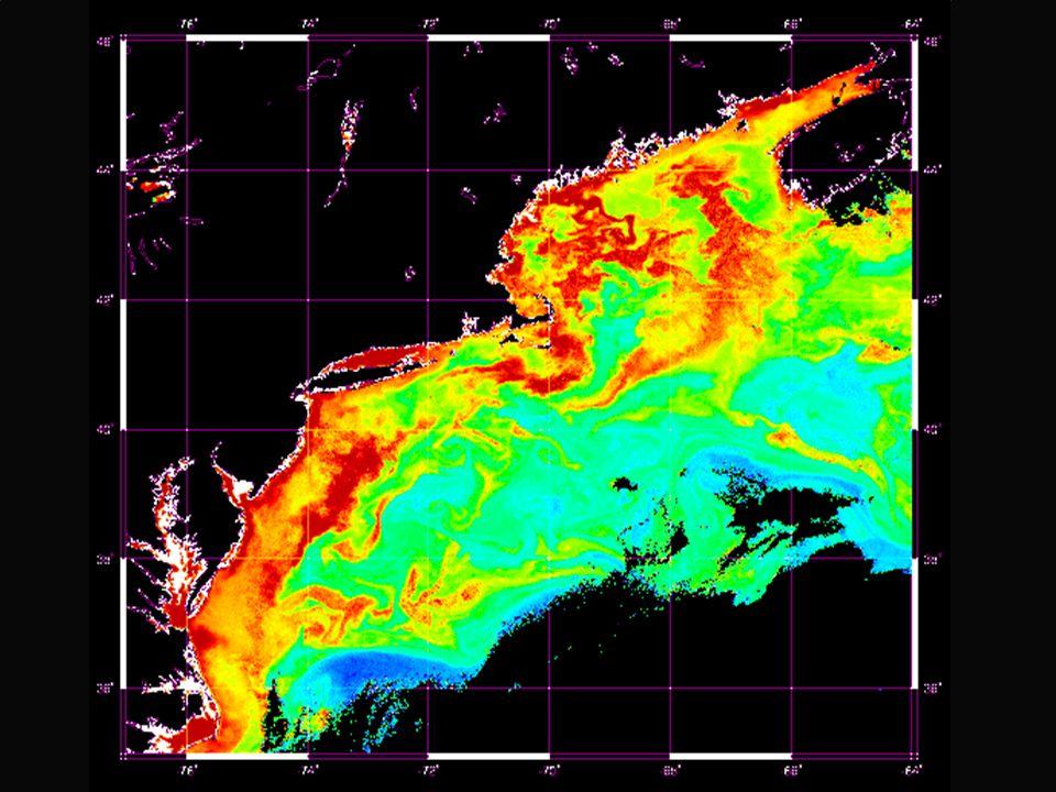 MEAN ANNUAL SEA SURFACE TEMPERATURE