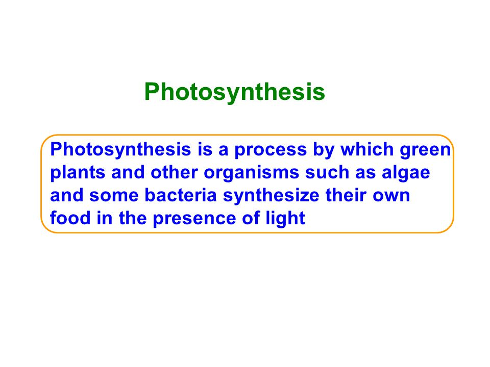 Photosynthesis Photosynthesis is a process by which green plants and other organisms such as algae and some bacteria synthesize their own food in the