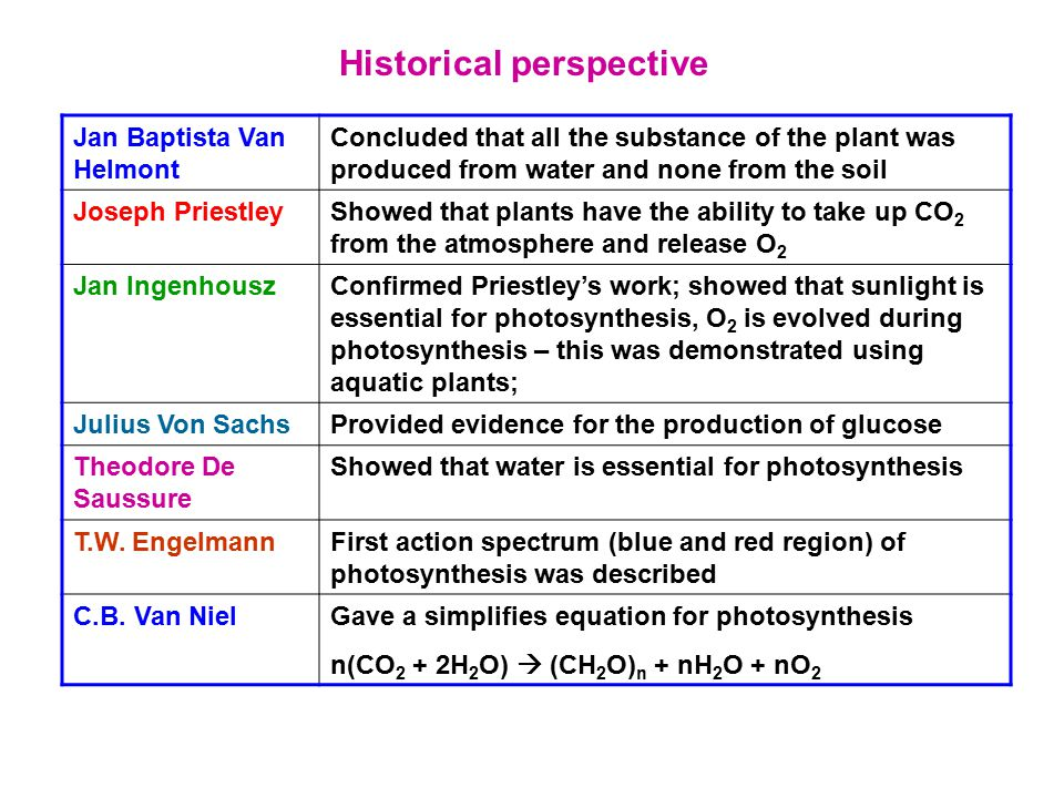 Historical perspective Jan Baptista Van Helmont Concluded that all the substance of the plant was produced from water and none from the soil Joseph Pr