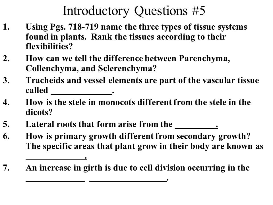 Introductory Questions #5 1.Using Pgs. 718-719 name the three types of tissue systems found in plants. Rank the tissues according to their flexibiliti