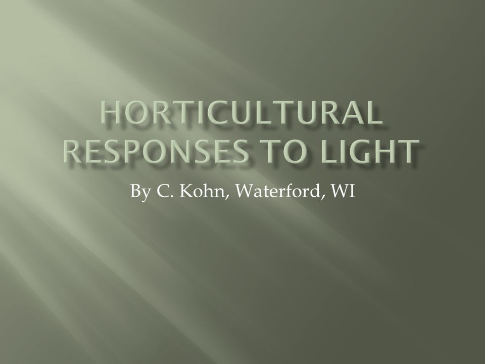 By C. Kohn, Waterford, WI