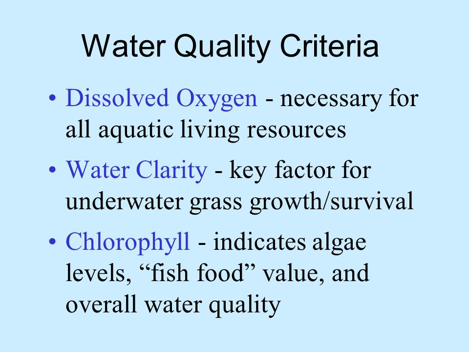 Water Quality Criteria Dissolved Oxygen - necessary for all aquatic living resources Water Clarity - key factor for underwater grass growth/survival Chlorophyll - indicates algae levels, fish food value, and overall water quality