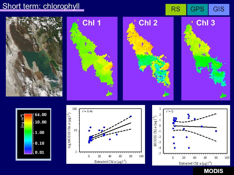 Chl 2Chl 3 Short term: chlorophyll Chl 1 MODIS GISGPSRS