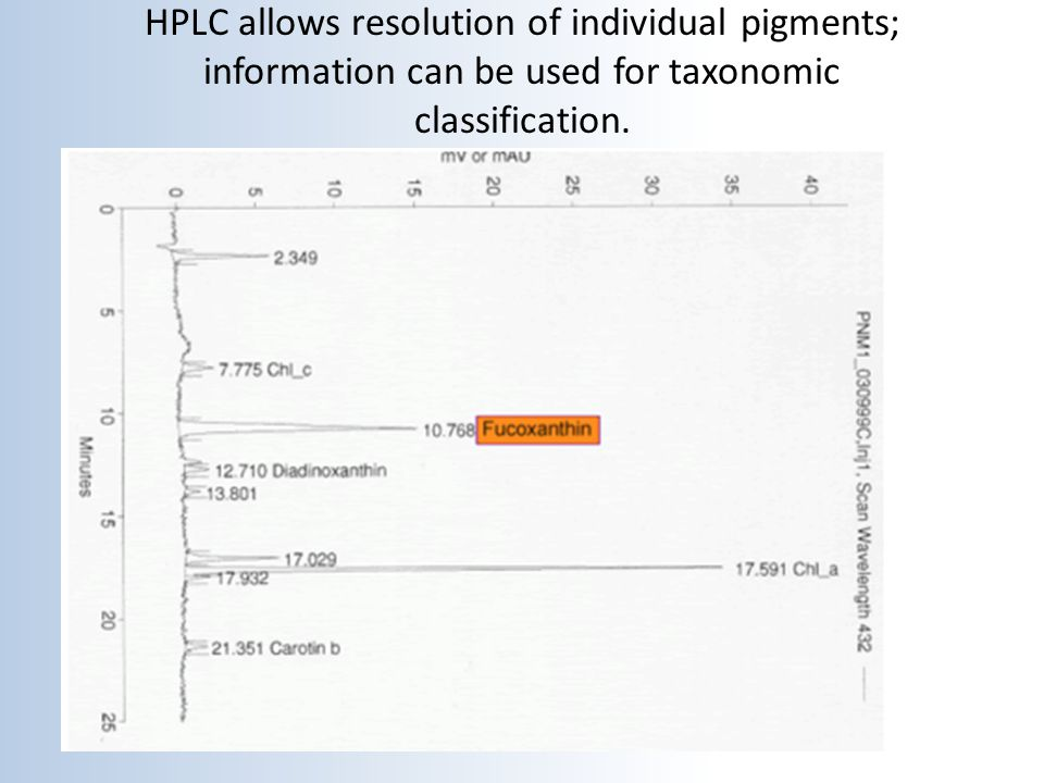 HPLC allows resolution of individual pigments; information can be used for taxonomic classification.