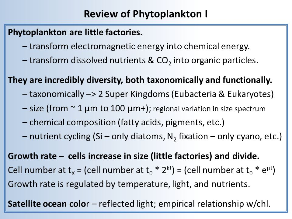 Both rates of photosynthesis and pigment concentration per cell are regulated by irradiance chl a/cell growth irradiance