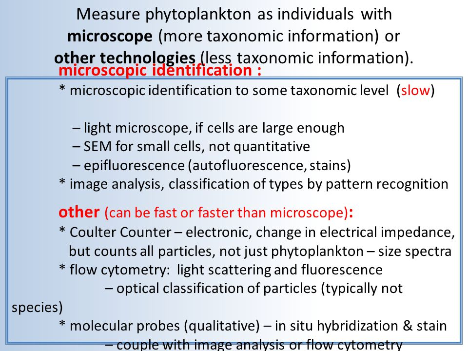 Functional response of photosynthesis to light.This is P vs.