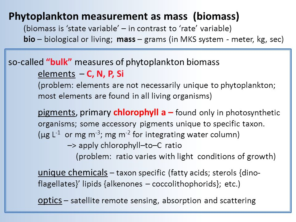 'Chlorophyll biomass' – proxy for phytoplankton carbon: extract of chlorophyll in lab & in vivo fluorescence in the water' Extract chlorophyll a: * filter cells * extract 90% acetone * blue light source, red light emission * concentration is proportional to red light emitted cell carbon chlorophyll a Irradiance of growth 15 50 Chlorophyll is unique to photosynthetic organisms.