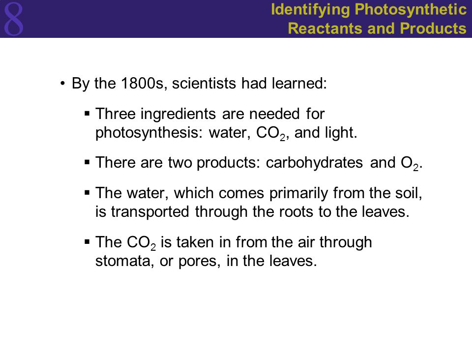 8 Identifying Photosynthetic Reactants and Products By the 1800s, scientists had learned:  Three ingredients are needed for photosynthesis: water, CO 2, and light.