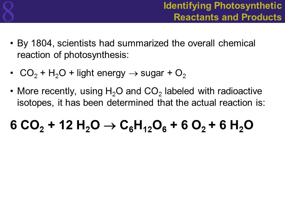 8 Identifying Photosynthetic Reactants and Products By 1804, scientists had summarized the overall chemical reaction of photosynthesis: CO 2 + H 2 O + light energy  sugar + O 2 More recently, using H 2 O and CO 2 labeled with radioactive isotopes, it has been determined that the actual reaction is: 6 CO 2 + 12 H 2 O  C 6 H 12 O 6 + 6 O 2 + 6 H 2 O