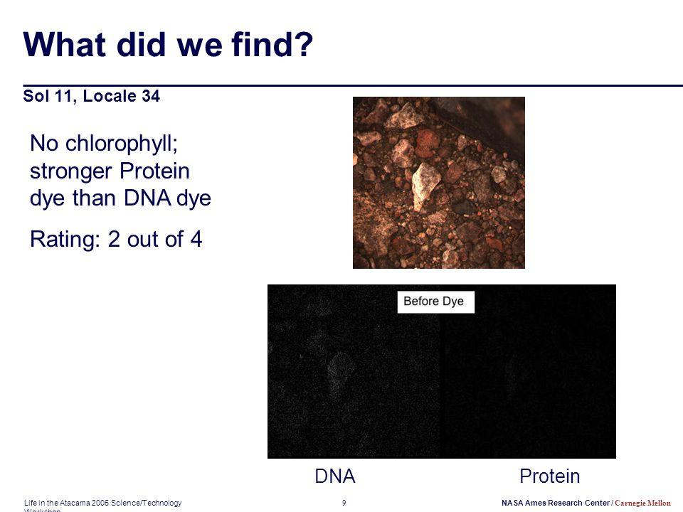 Life in the Atacama 2005 Science/Technology Workshop 9NASA Ames Research Center / Carnegie Mellon What did we find? Sol 11, Locale 34 DNAProtein No ch
