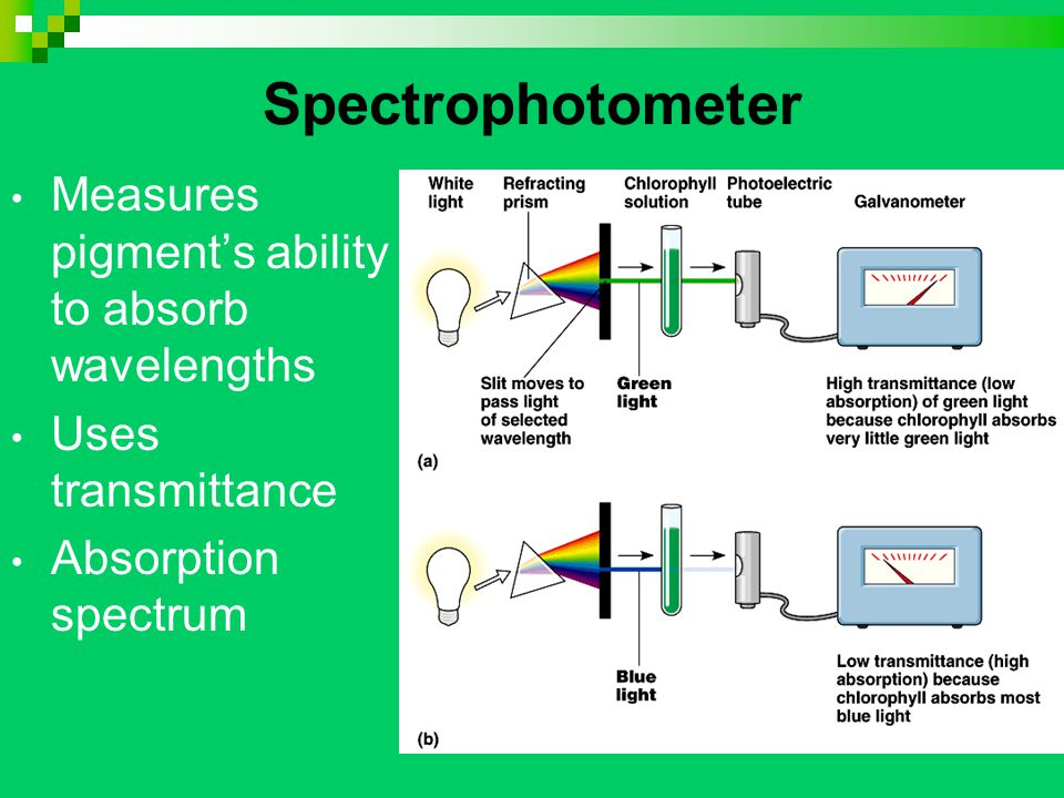Spectrophotometer Measures pigment's ability to absorb wavelengths Uses transmittance Absorption spectrum