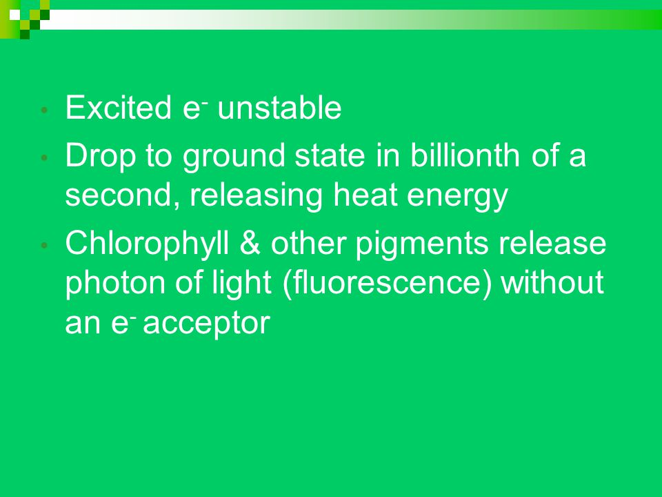Excited e - unstable Drop to ground state in billionth of a second, releasing heat energy Chlorophyll & other pigments release photon of light (fluorescence) without an e - acceptor