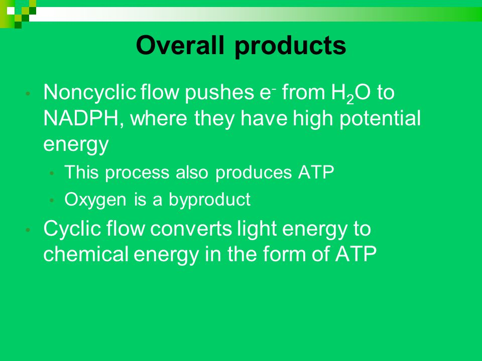 Overall products Noncyclic flow pushes e - from H 2 O to NADPH, where they have high potential energy This process also produces ATP Oxygen is a byproduct Cyclic flow converts light energy to chemical energy in the form of ATP