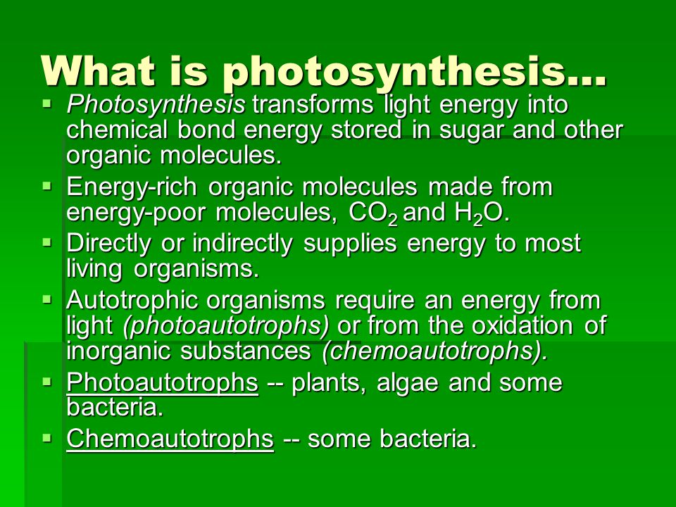 What is photosynthesis…  Photosynthesis transforms light energy into chemical bond energy stored in sugar and other organic molecules.