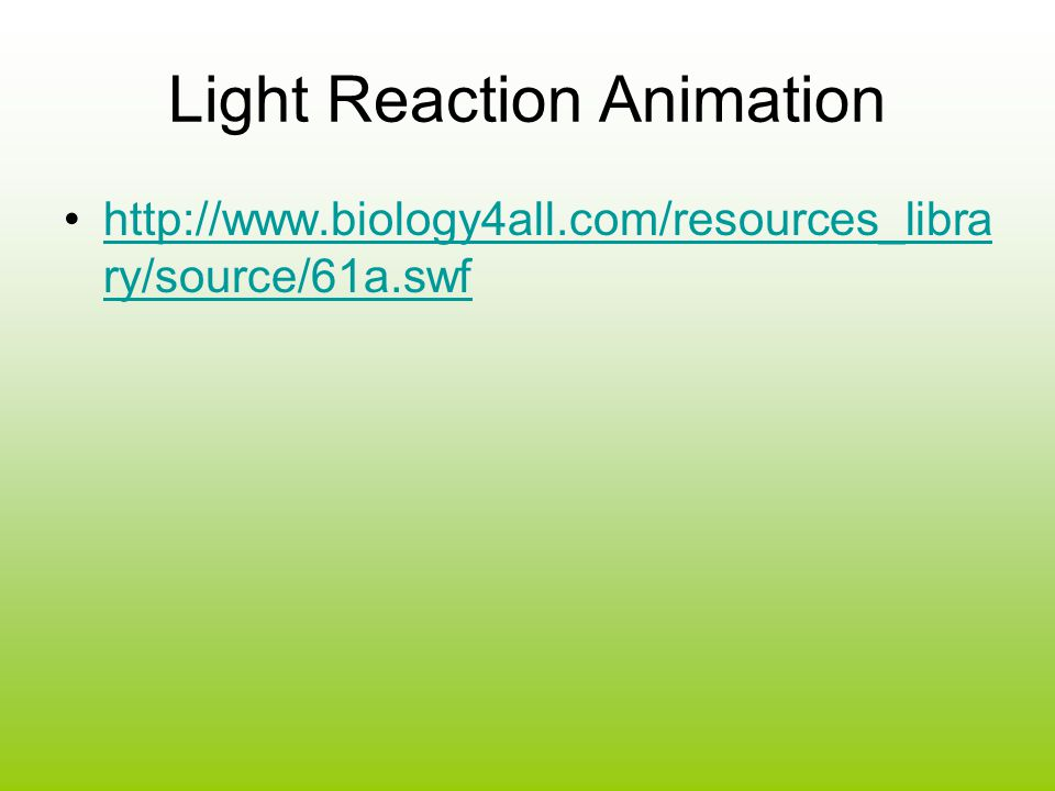 Light Reaction Animation http://www.biology4all.com/resources_libra ry/source/61a.swfhttp://www.biology4all.com/resources_libra ry/source/61a.swf