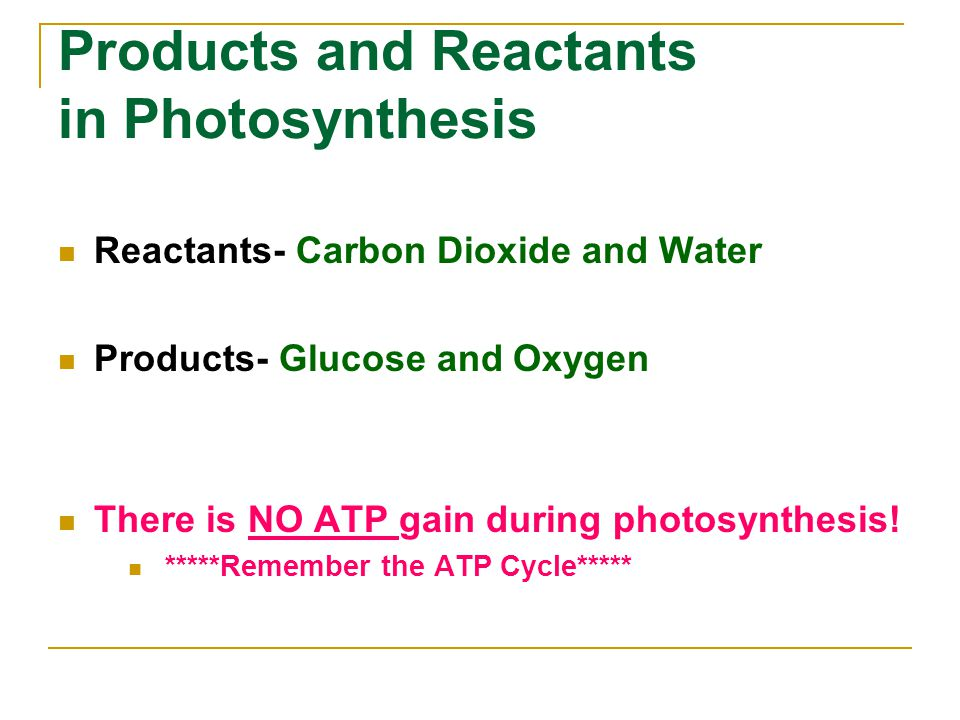 Products and Reactants in Photosynthesis Reactants- Carbon Dioxide and Water Products- Glucose and Oxygen There is NO ATP gain during photosynthesis!