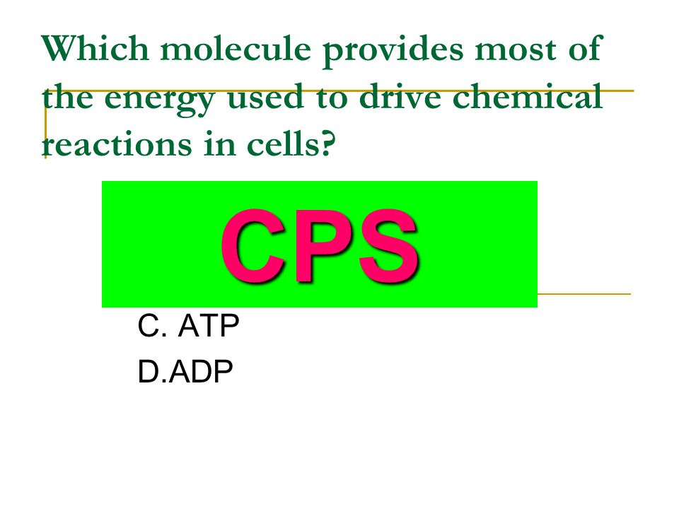 Which molecule provides most of the energy used to drive chemical reactions in cells? A. DNA B. RNA C. ATP D.ADP CPS