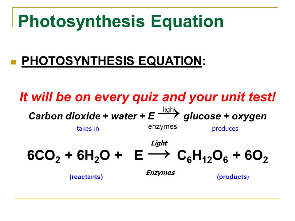 Photosynthesis Equation PHOTOSYNTHESIS EQUATION: It will be on every quiz and your unit test! Carbon dioxide + water + E → glucose + oxygen 6CO 2 + 6H