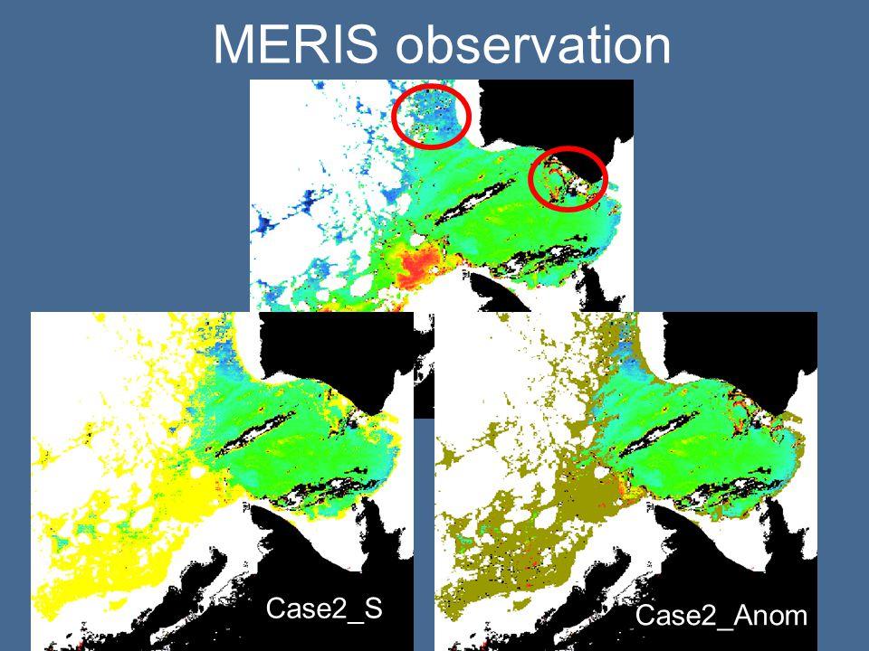 Case2_S MERIS observation Case2_Anom