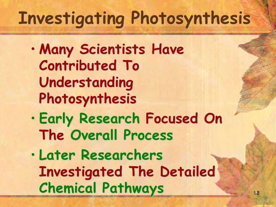 18 Investigating Photosynthesis Many Scientists Have Contributed To Understanding PhotosynthesisMany Scientists Have Contributed To Understanding Photosynthesis Early Research Focused On The Overall ProcessEarly Research Focused On The Overall Process Later Researchers Investigated The Detailed Chemical PathwaysLater Researchers Investigated The Detailed Chemical Pathways