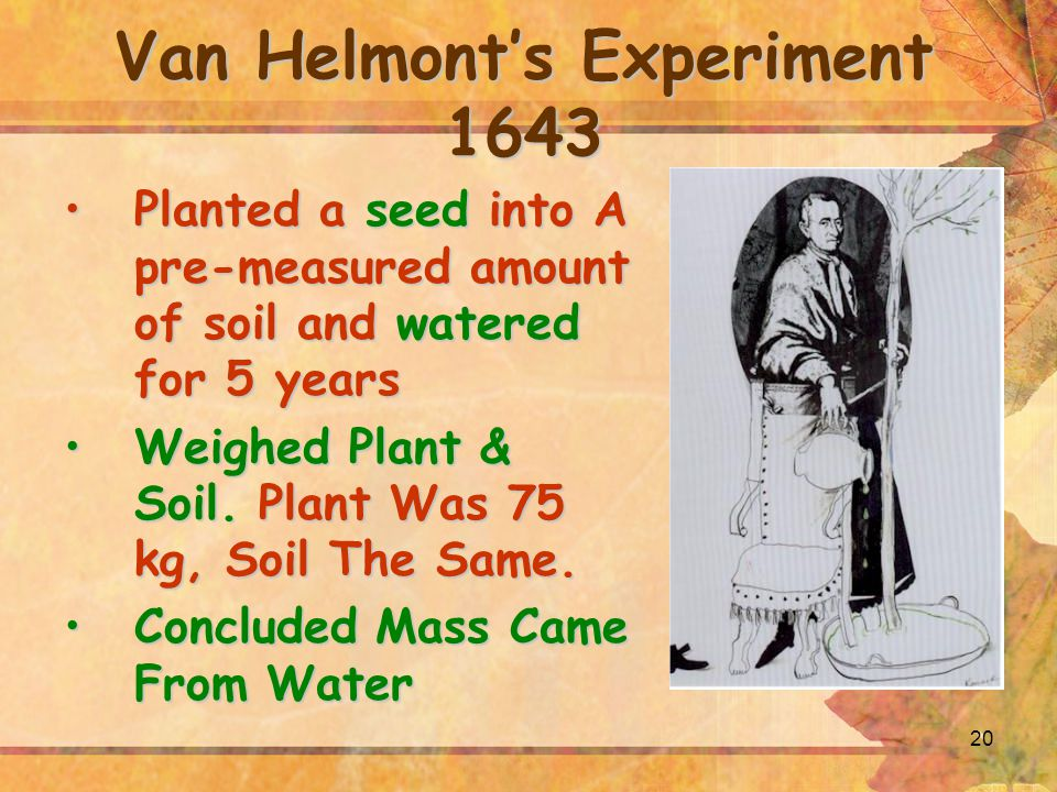 20 Van Helmont's Experiment 1643 Planted a seed into A pre-measured amount of soil and watered for 5 yearsPlanted a seed into A pre-measured amount of soil and watered for 5 years Weighed Plant & Soil.