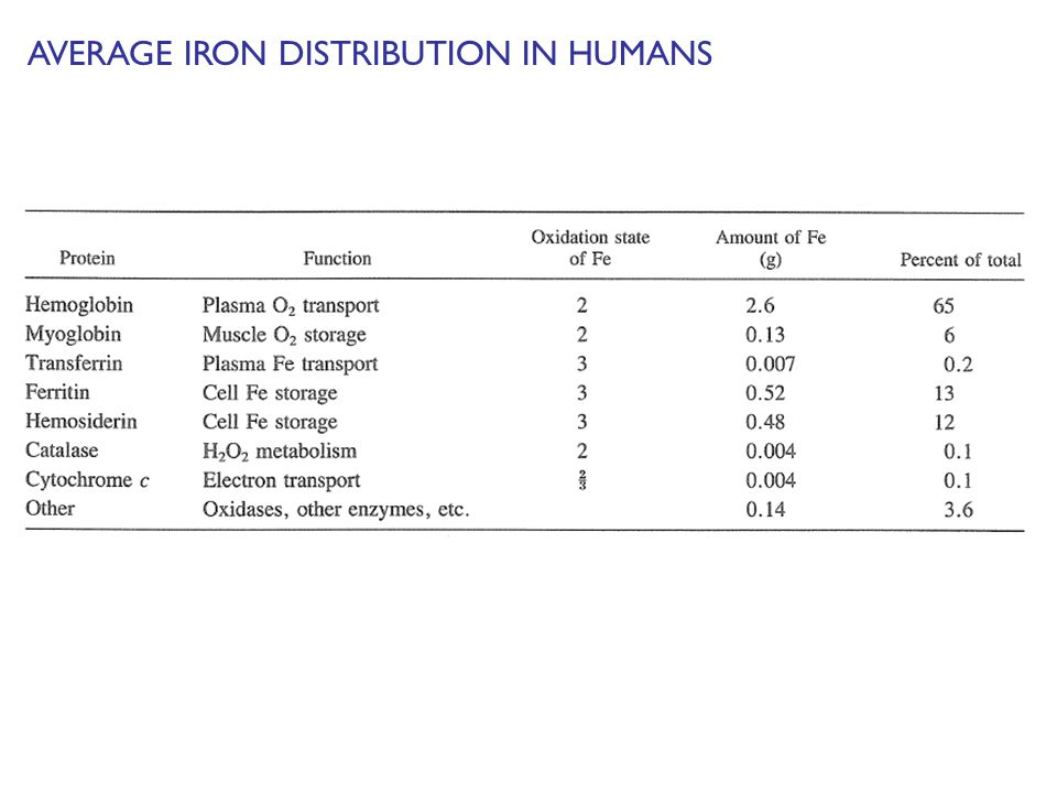 AVERAGE IRON DISTRIBUTION IN HUMANS