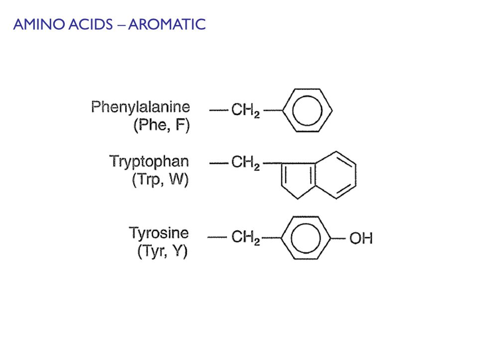 AMINO ACIDS – AROMATIC