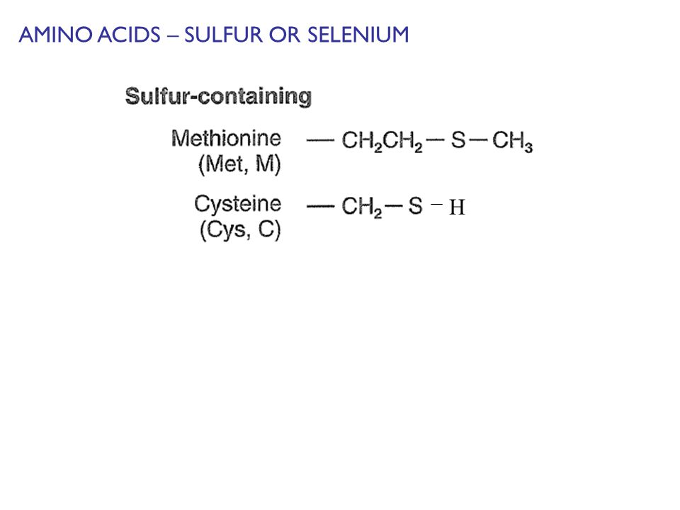 AMINO ACIDS – SULFUR OR SELENIUM H