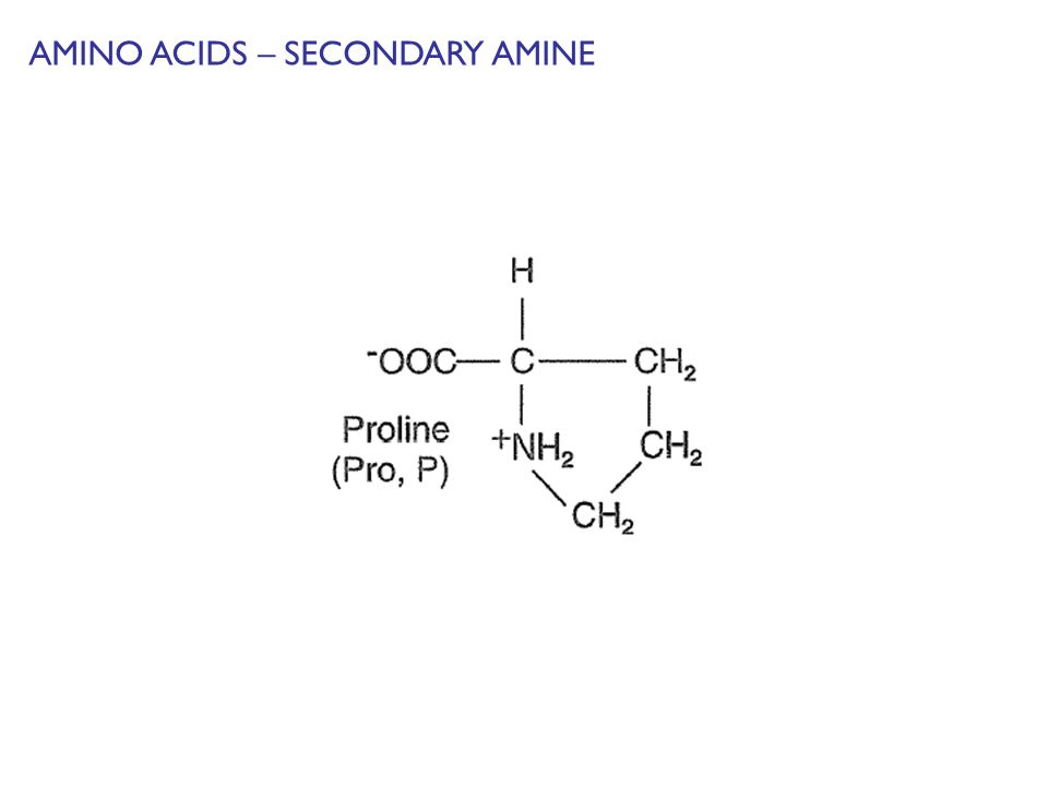 AMINO ACIDS – SECONDARY AMINE