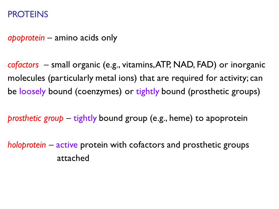 PROTEINS apoprotein – amino acids only cofactors – small organic (e.g., vitamins, ATP, NAD, FAD) or inorganic molecules (particularly metal ions) that