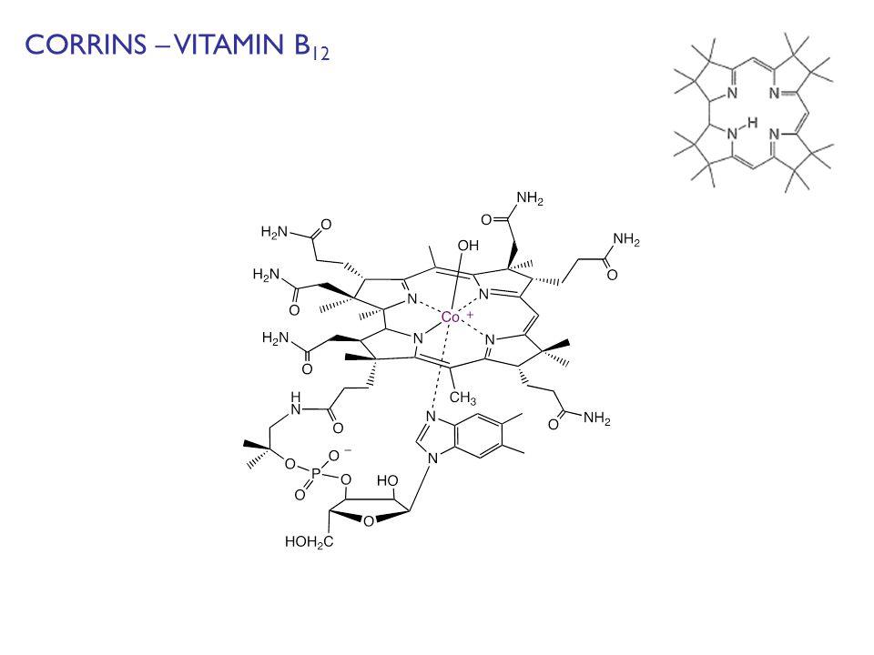 CORRINS – VITAMIN B 12