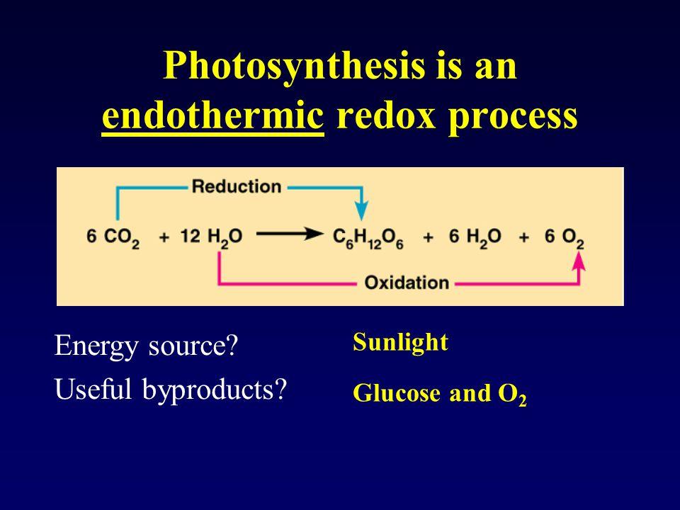 Photosystem II makes ATP