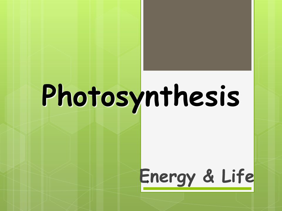 Photosynthesis Energy & Life 1