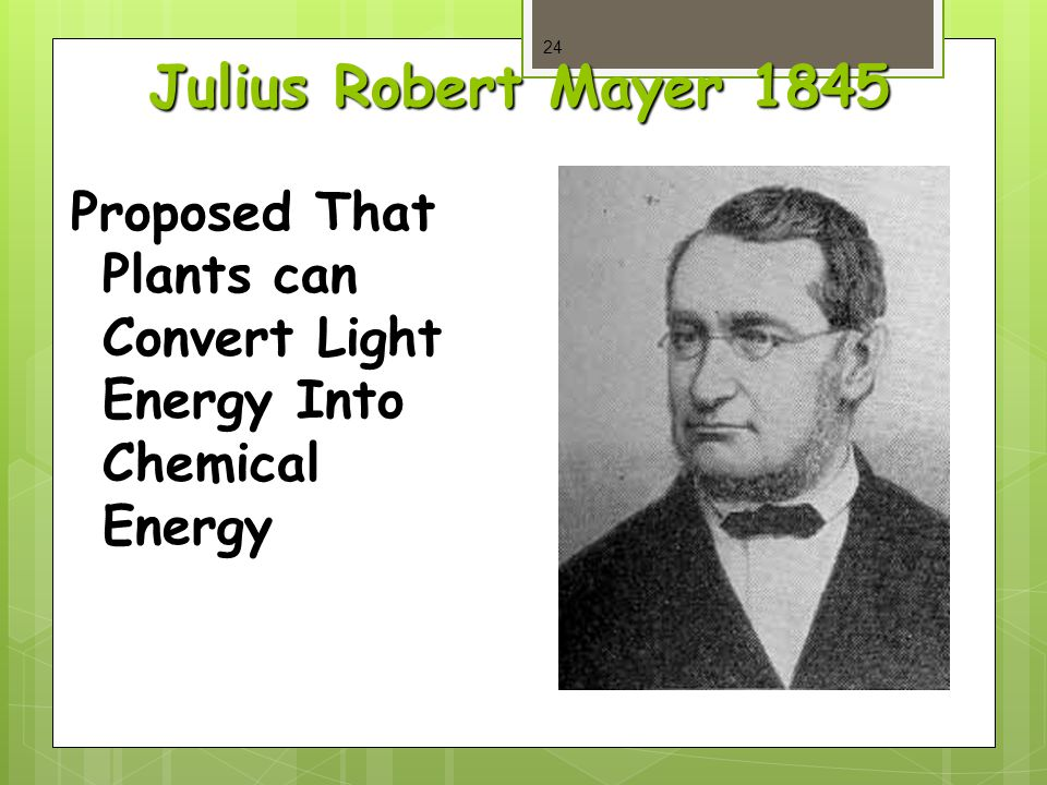 Julius Robert Mayer 1845 Proposed That Plants can Convert Light Energy Into Chemical Energy 24
