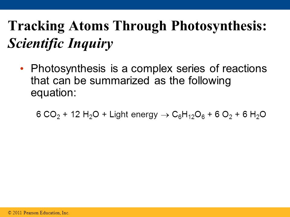 Tracking Atoms Through Photosynthesis: Scientific Inquiry Photosynthesis is a complex series of reactions that can be summarized as the following equa