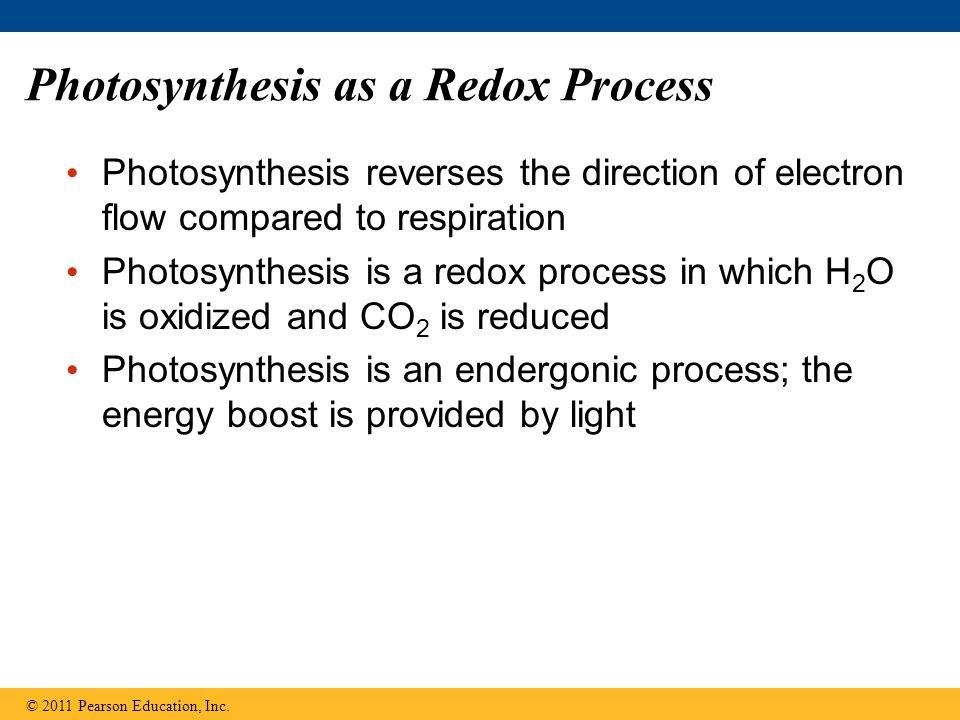 Photosynthesis as a Redox Process Photosynthesis reverses the direction of electron flow compared to respiration Photosynthesis is a redox process in