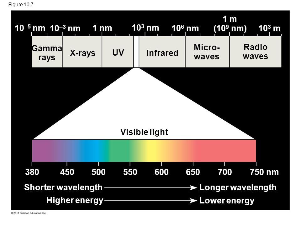 Figure 10.7 Gamma rays X-rays UV Infrared Micro- waves Radio waves Visible light Shorter wavelength Longer wavelength Lower energy Higher energy 380 4