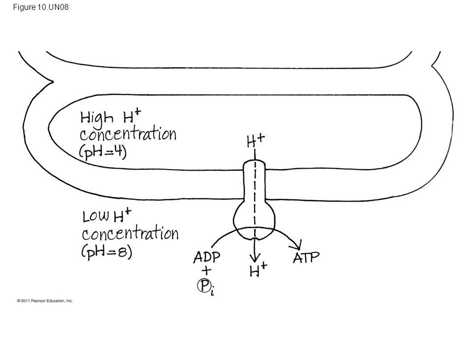 Figure 10.UN08