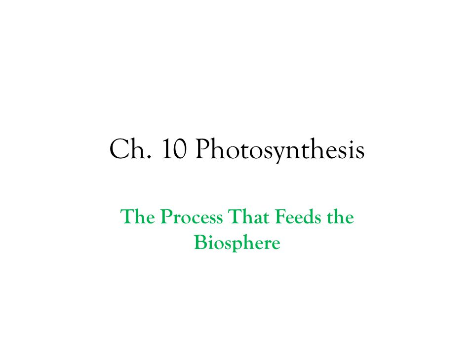 Ch. 10 Photosynthesis The Process That Feeds the Biosphere