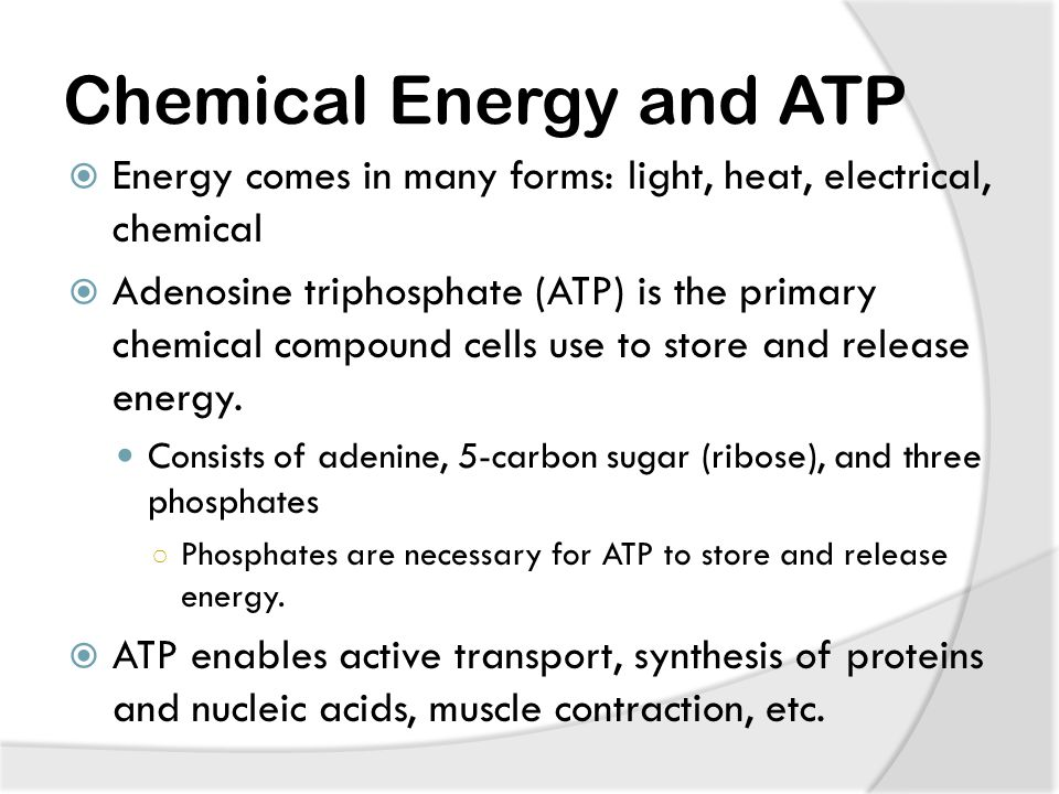 Chemical Energy and ATP  Energy comes in many forms: light, heat, electrical, chemical  Adenosine triphosphate (ATP) is the primary chemical compound cells use to store and release energy.