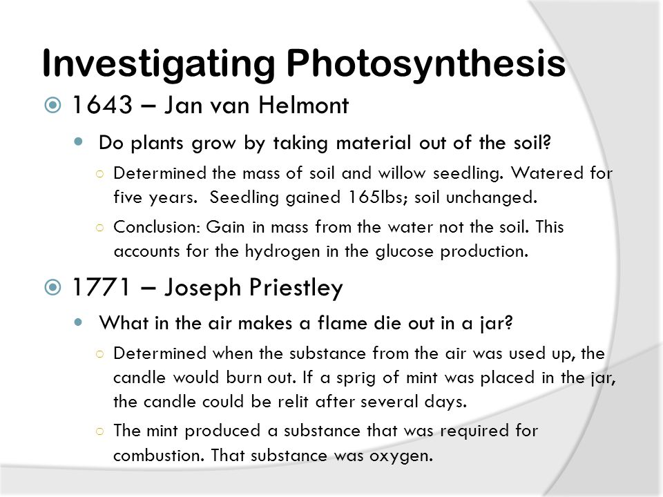 Investigating Photosynthesis  1643 – Jan van Helmont Do plants grow by taking material out of the soil.