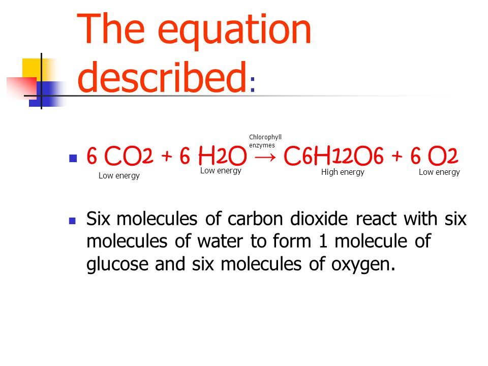 The equation described : 6 CO2 + 6 H2O → C6H12O6 + 6 O2 Six molecules of carbon dioxide react with six molecules of water to form 1 molecule of glucos