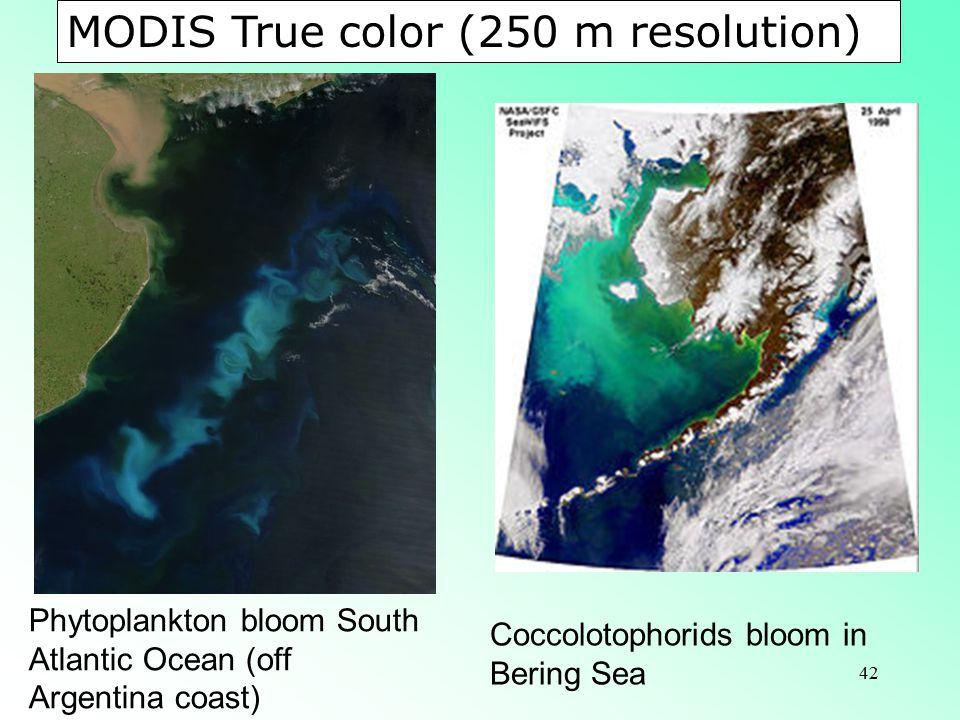 42 Phytoplankton bloom South Atlantic Ocean (off Argentina coast) Coccolotophorids bloom in Bering Sea MODIS True color (250 m resolution)