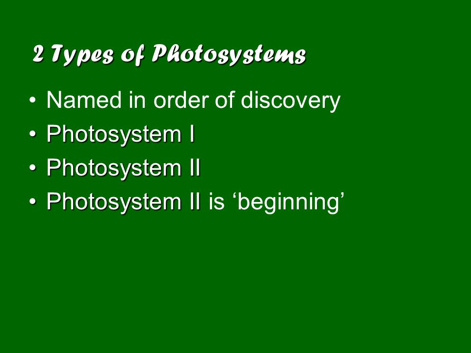 2 Types of Photosystems Named in order of discovery Photosystem IPhotosystem I Photosystem IIPhotosystem II Photosystem IIPhotosystem II is 'beginning'