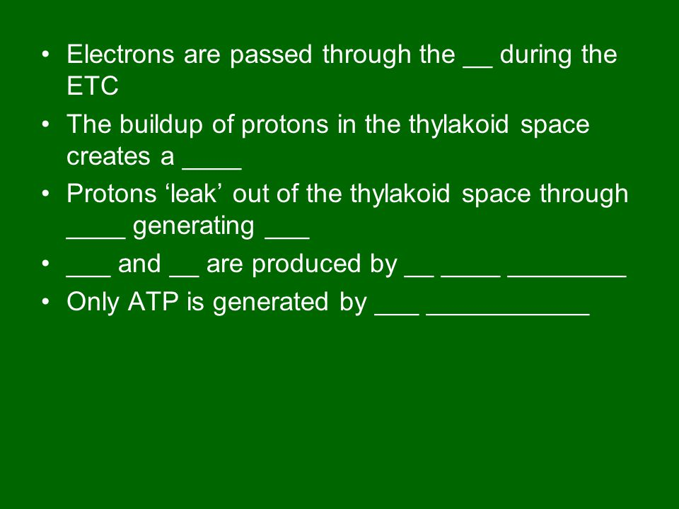 Electrons are passed through the __ during the ETC The buildup of protons in the thylakoid space creates a ____ Protons 'leak' out of the thylakoid space through ____ generating ___ ___ and __ are produced by __ ____ ________ Only ATP is generated by ___ ___________