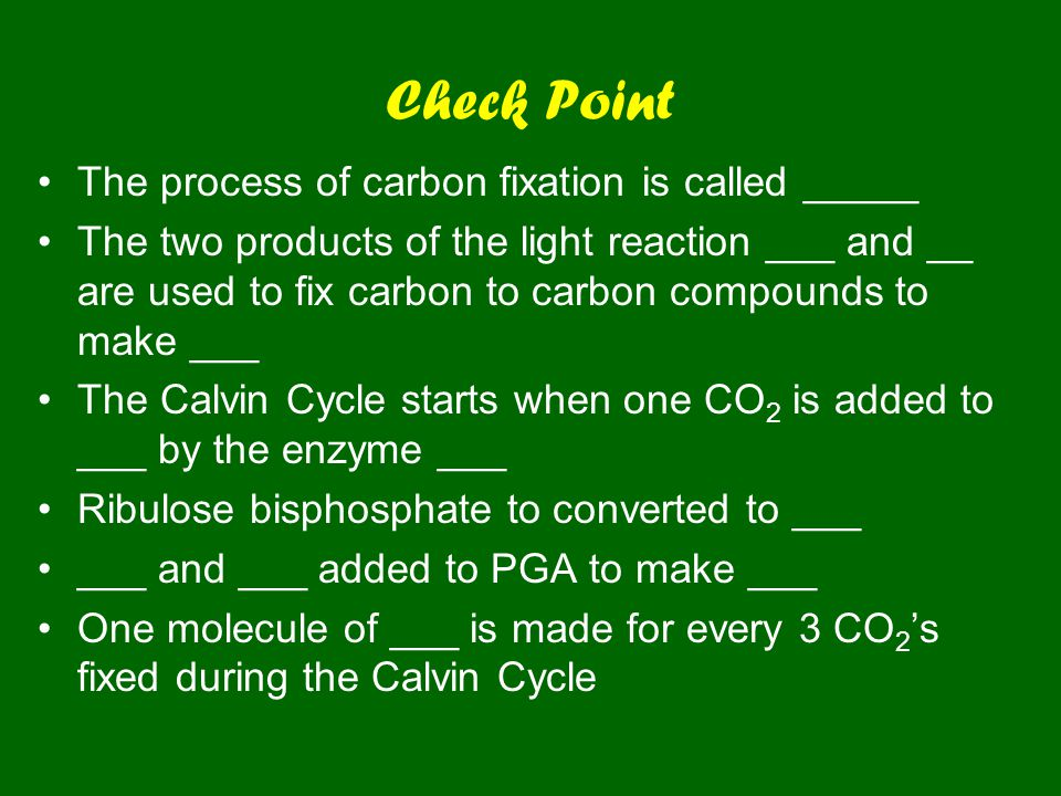 Check Point The process of carbon fixation is called _____ The two products of the light reaction ___ and __ are used to fix carbon to carbon compounds to make ___ The Calvin Cycle starts when one CO 2 is added to ___ by the enzyme ___ Ribulose bisphosphate to converted to ___ ___ and ___ added to PGA to make ___ One molecule of ___ is made for every 3 CO 2 's fixed during the Calvin Cycle
