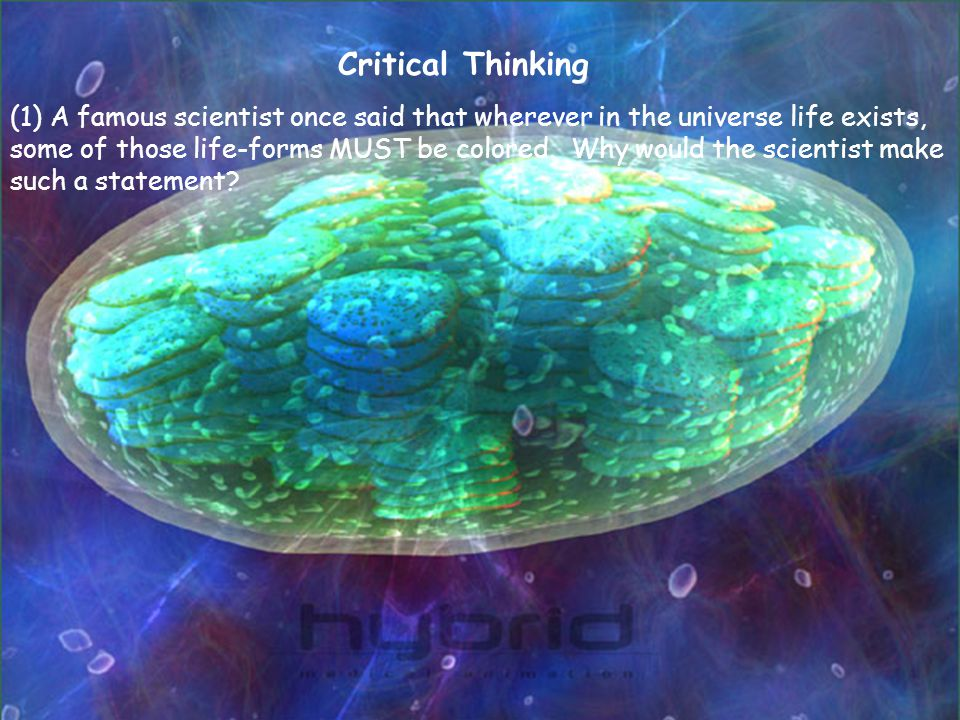 (1) A famous scientist once said that wherever in the universe life exists, some of those life-forms MUST be colored. Why would the scientist make suc