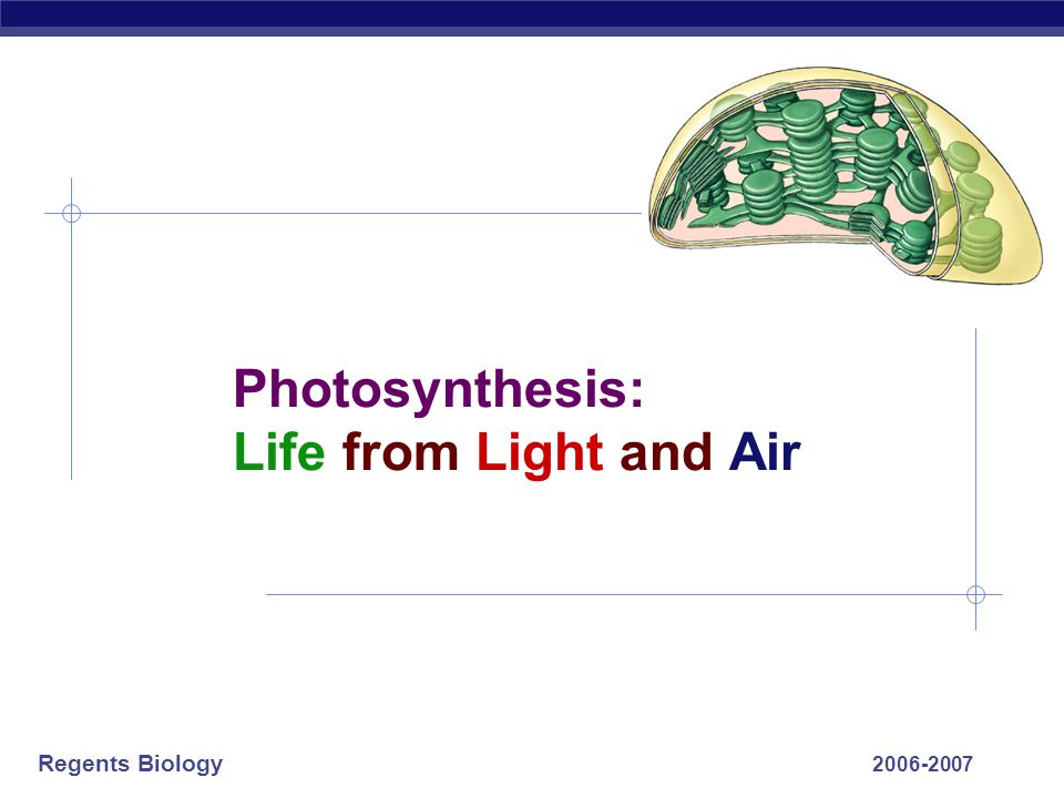 Regents Biology 2006-2007 Photosynthesis: Life from Light and Air